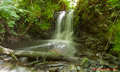Dryden Woods hidden Waterfall 13th July 2014