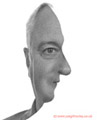 Face Illusion images 19th July 2014