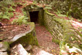 Icehouse in Dryden Woods 13th July 2014