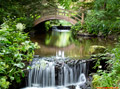 Japanese Water Garden at Stobo Castle - 24th July 2015