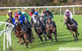 Musselburgh Horseracing 14th October 20192019