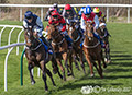 Musselburgh Races 15th April 2017