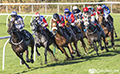 Musselburgh Horse Racing 15th October 2018