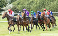 Musselburgh Races 23rd July 2019
