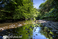River North Esk  5th June 2018