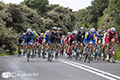 Tour of Britain Cycle Race Stage 1 Edinburgh 3rd Sept 2017